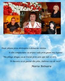 SĂRATA-GALBENA A MARIEI BOTNARU
