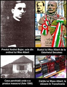 Victima-Andrei-Bujor-si-calaul-Wass-Albert